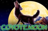 Игровой автомат Луна Койота